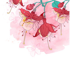 red tropical flowers and butterflies vector image