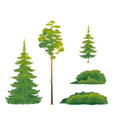 Set forest trees isolated vector