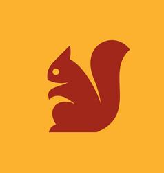squirrel logo vector image
