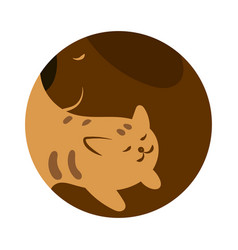 veterinary logo for pet shop vector image