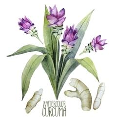 Watercolor curcuma set vector image vector image