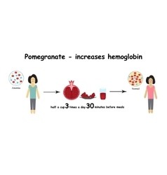 Anemia the reduced amount red blood cells vector