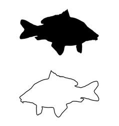 Carp silhouette vector