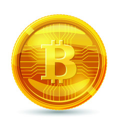 golden bitcoin coin crypto currency golden coin vector image