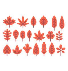 flat design autumn leaf shapes set vector image