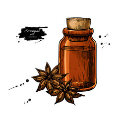 Anise star essential oil bottle and heap spices vector
