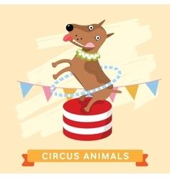 Circus Dog animal series vector image