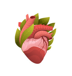 healthy human heart metaphor flat vector image
