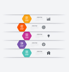 Infographics five options vector