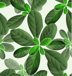 Leaf pattern background2 vector