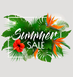 Tropical summer sale background with exotic vector