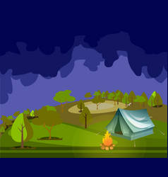 camping in forest at night vector image