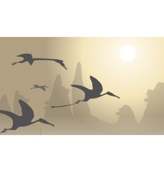 Silhouette of pterodactyl beautiful landscape vector image vector image