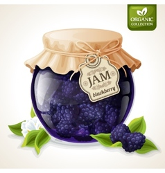 Blackberry jam glass vector