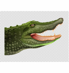 crocodile head on transparent background vector image