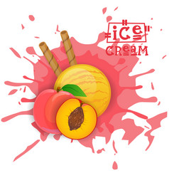 ice cream peach ball fruit dessert choose your vector image