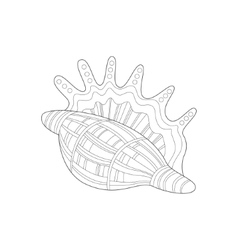 Lambis Snail Shell Sea Underwater Nature Adult vector