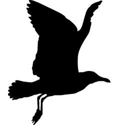 Seagull in flight silhouette vector