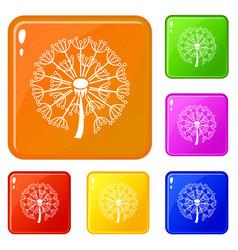 spring dandelion icons set color vector image