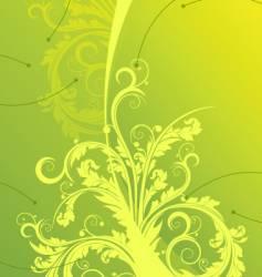 floral designs vector image vector image