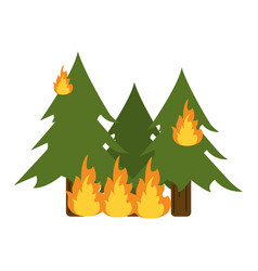 trees burning in forest vector image