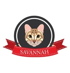Flat icon pedigreed cat savannah vector