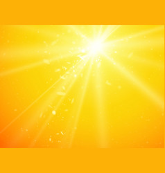 sun light rays and dust background vector image