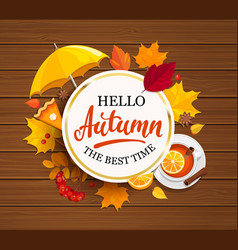 hello autumn lettering in gold frame vector image