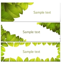 Green leaves banners set vector image vector image