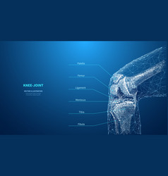 Abstract polygonal knee-joint on blue background vector