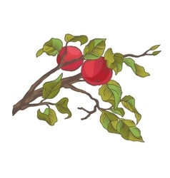 Hand drawing an apple branch vector image