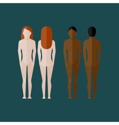 with naked women body front and back view in flat vector image