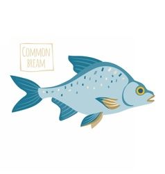Common bream vector image