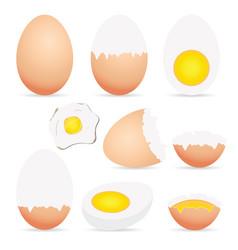 egg food set colored vector image