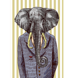 Elephant in jacket vector