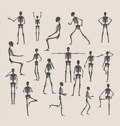 Skeleton Poses Vector Images (over 400)
