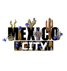 mexican print for t-shirt with slogan and cactus vector image