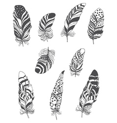 Set of Ornamental Boho Style Feather Hippie Design vector