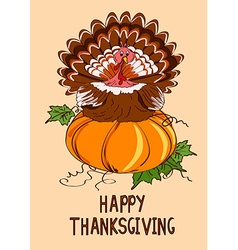 Thanksgiving card with pumpkin and turkey bird vector image