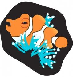 clown fish vector image