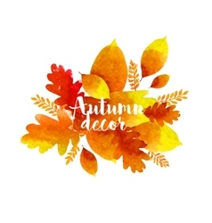 Autumn watercolor leaves vector image vector image
