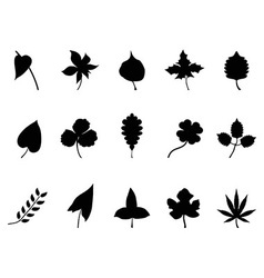 black leaves Silhouettes set vector image