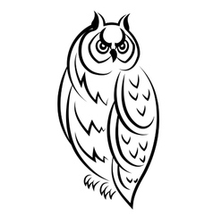 Sketch of an owl bird vector image vector image