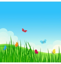 Beautiful summer meadow vector