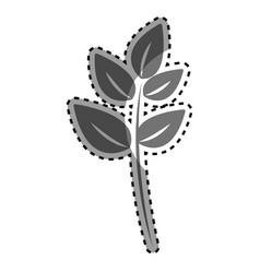 Gray plant branch decoration design vector