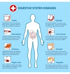 Human Digestive System Diseases vector image