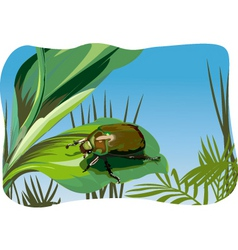 Nature illustration vector