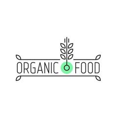 Organic food linear logo with wheat vector