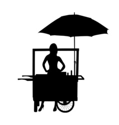 saleswoman from his wheelchair vector image