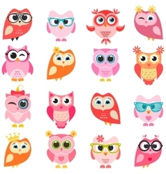 set of red and pink owls vector image